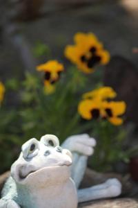 flowermonthday#3