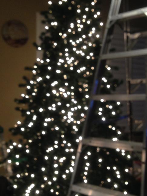 christmastree4-w