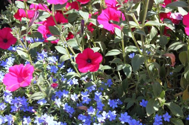 spring14-3-w