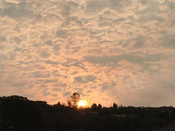 sunrise-w