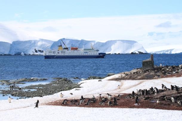 antarctica3-w