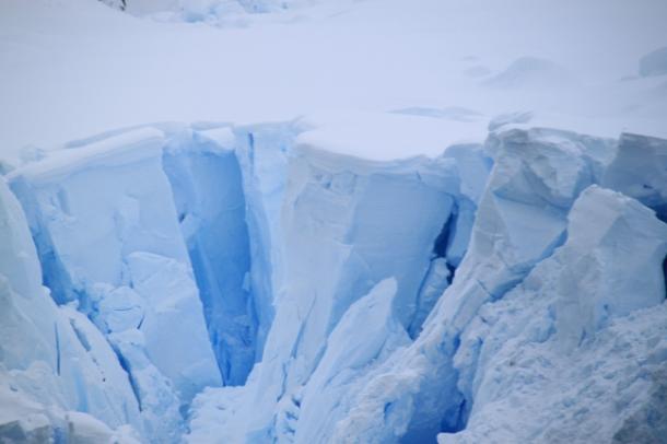 icebergs10-w