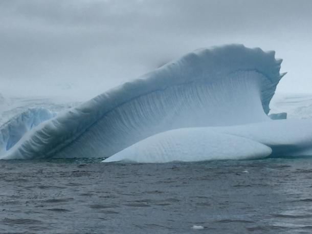 icebergs12-w