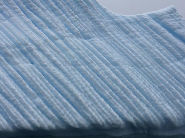 icebergs13-w