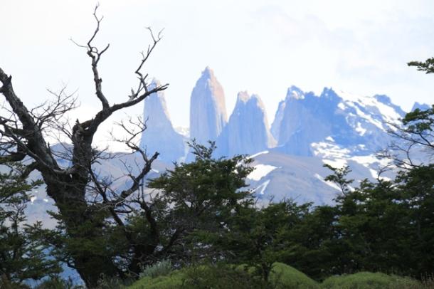 patagonia15-w