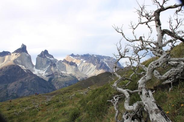 patagonia16-w