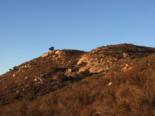 hiking1-w