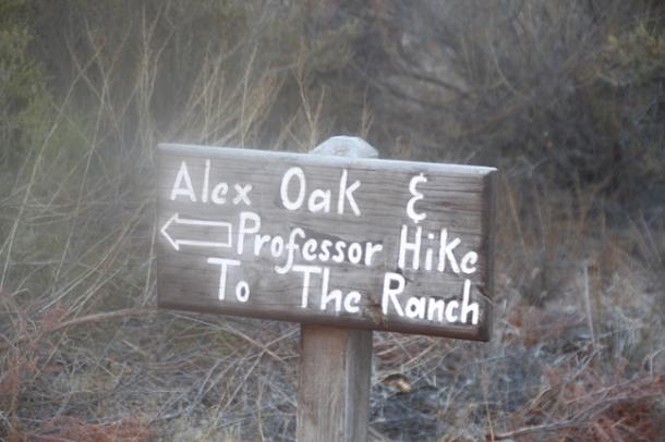 hiking2-w