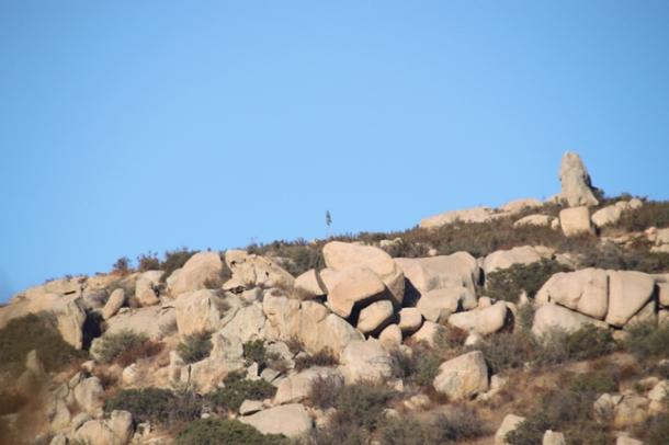 hiking7-w