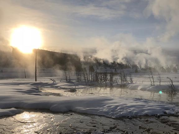 winteryellow-w-10
