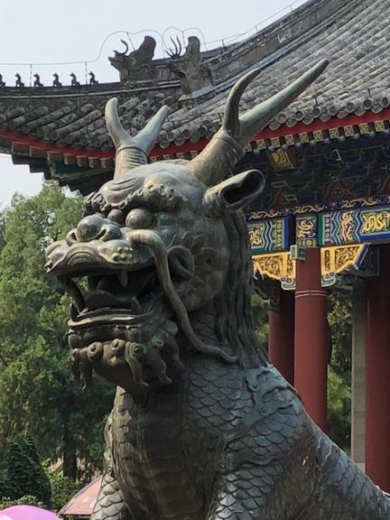beijing31-w